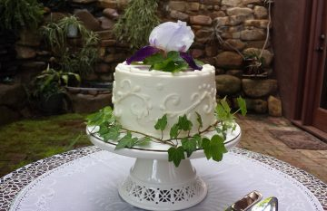 Petite Sweets wedding cake at Storybrook Farm