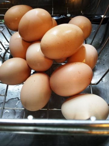 Eggs from our resident chickens