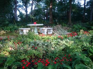 Woods gardens