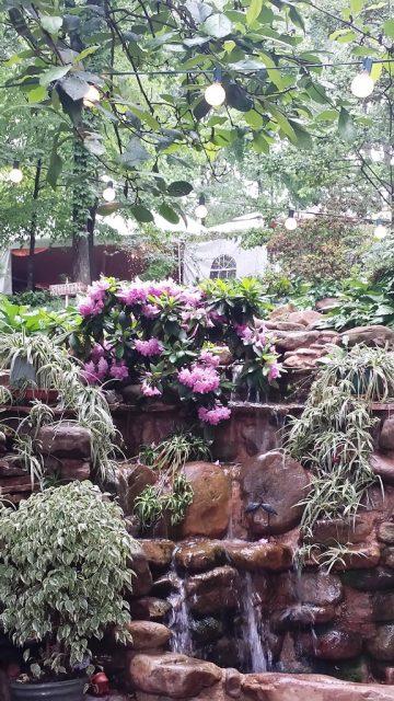 Secret Garden waterfall